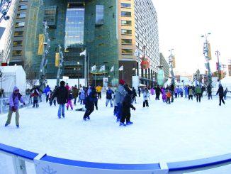 校园马蒂乌斯底特律滑冰