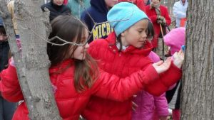 Troy Maple Syrup Time @ Stage Nature Center