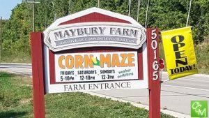 Maybury Farm Corn Maze & Hayrides @ Maybury Farm