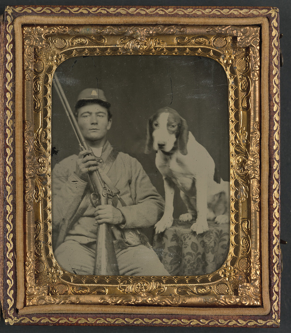 old dog photos, vintage dog photos, antique dog photos