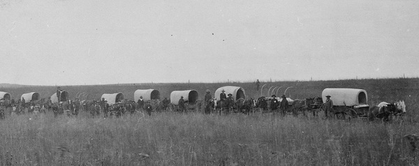 black and white covered wagon. this photo from around 1900 in oklahoma shows a modernized version of what the pioneers used. these wagons were used primarily to transport goods market. black and white covered wagon h