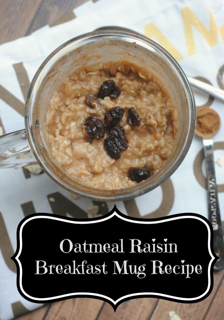 Oatmeal Raisin Breakfast Mug Recipe