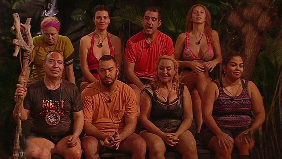 Estos son todos los integrantes de su equipo.