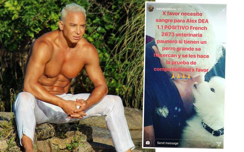 Flavio Mendoza, triste por la salud de su perro.