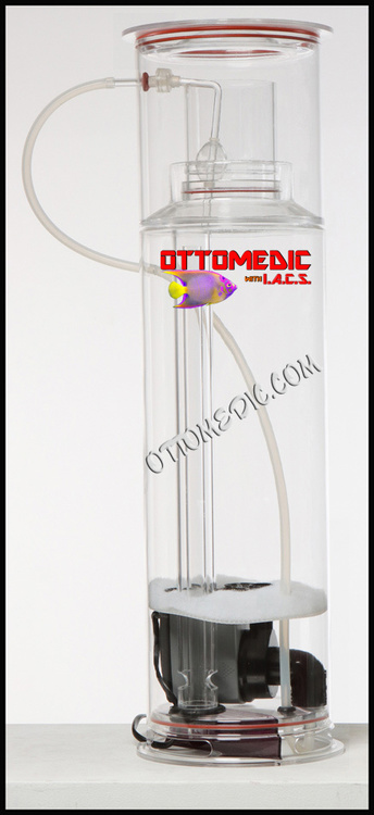 ottomedic_full_view_final_cropped_watermark.jpg