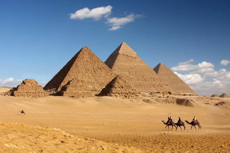Pyramids pollpuma