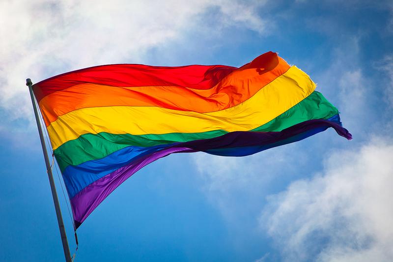 Gay marriage pollpuma