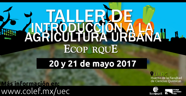 Banner taller intro agricultura urbana mayo