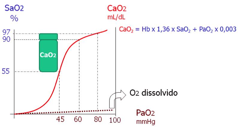 Influências da PaO2, SaO2 e curva da dissociação da hemoglobina sobre o CaO2