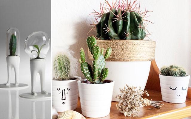 Deco con cactus ideas para llenar de energ a y vitalidad for Revista ideas para tu hogar