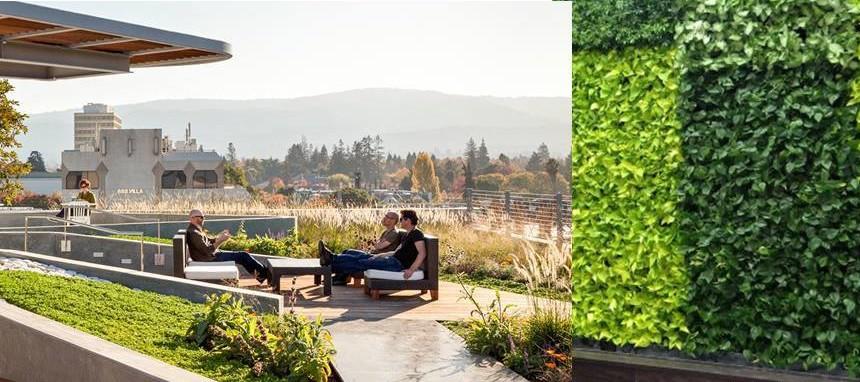 La empresa babilonia ofrece jardines verticales y techos for Edificios con jardines verticales