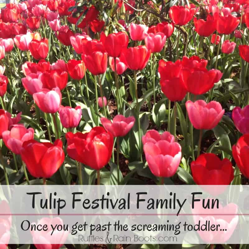 From Ruffles And Rain Boots: Tulip Festival Mount Vernon, WA; family fun trip, great places for family photos