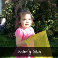 Butterfly-catch-game