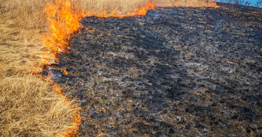 High risk fire conditions forecast for Monday