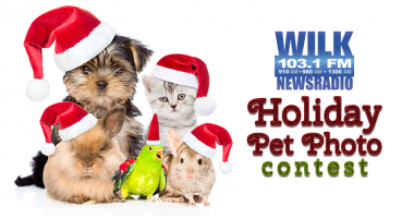 Your beloved pet could win you $500!