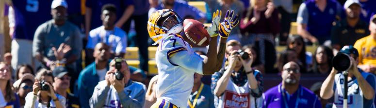 Guice, Chark lead LSU past Arkansas 33-10