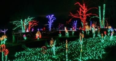 Holiday Lights Being Auctioned Online