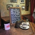 Want a little company over coffee before you enter the San Francisco Dungeon? The Rat Cafe will be open for two days only. (Photo courtesy of the San Francisco Dungeon)ÿ