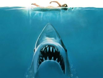 """從""""大白鯊""""到小動物收容所——本周五大不容錯過的本地活動"""