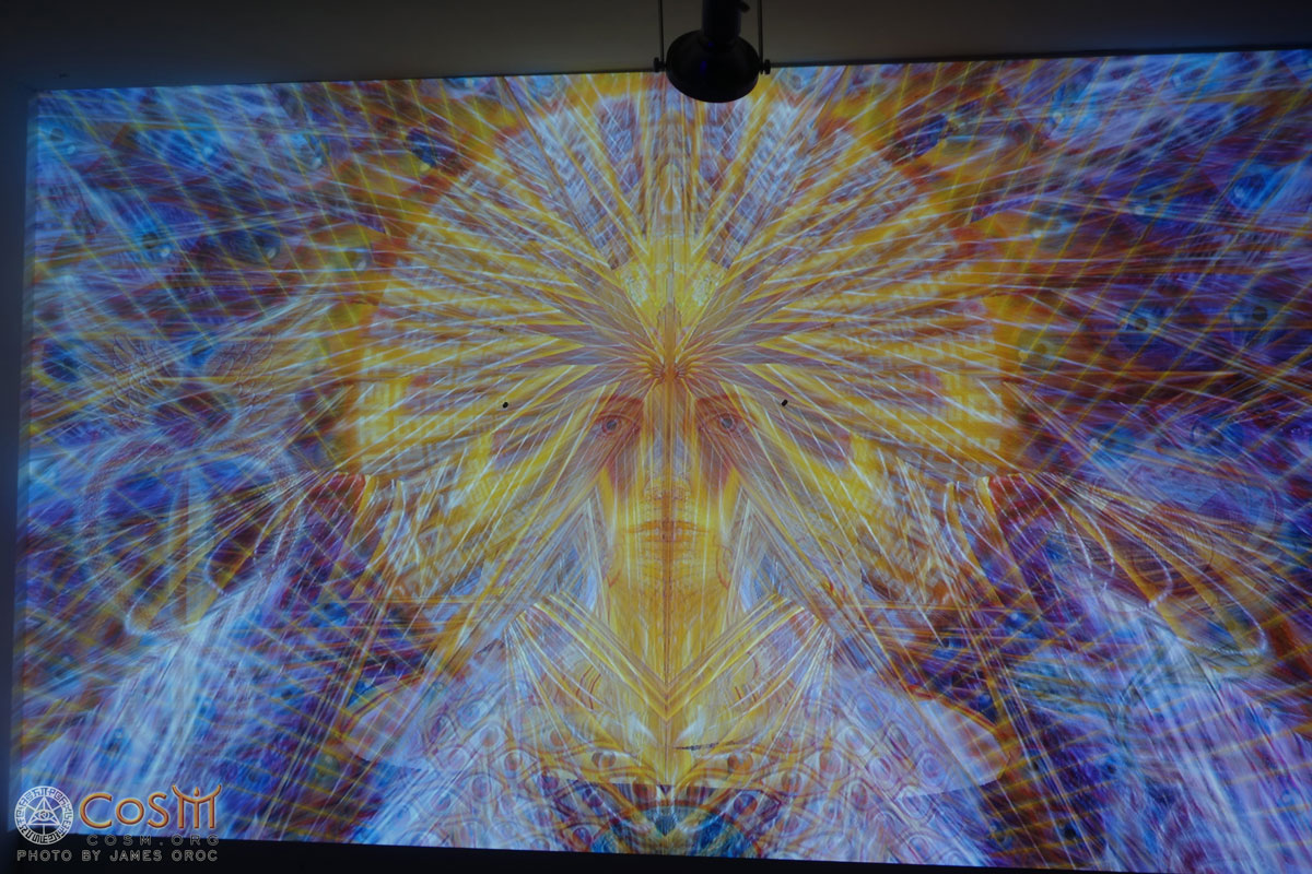 Visual Projections for Alex Grey