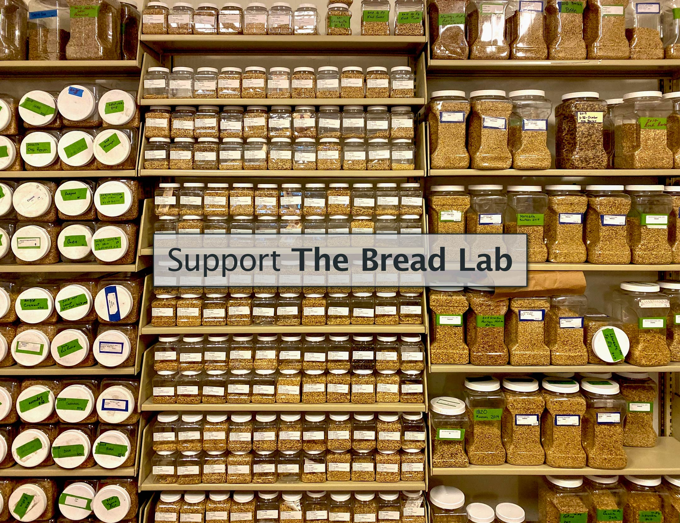 Support the Bread Lab