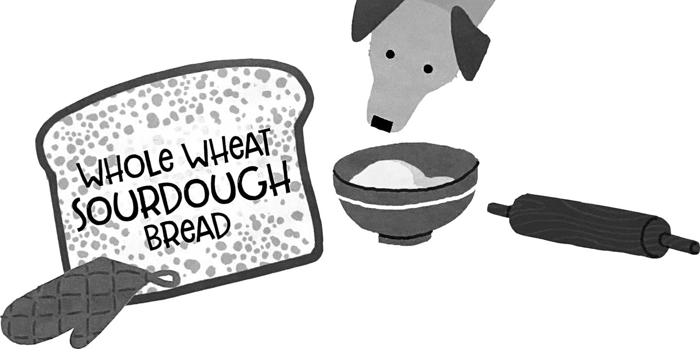 """(Illustration) Dog peers into mixing bowl; oversized slice of bread """"Whole Wheat Sourdough Bread"""""""