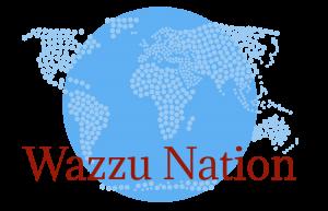 WazzoNation
