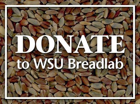 Donate to WSU Breadlab