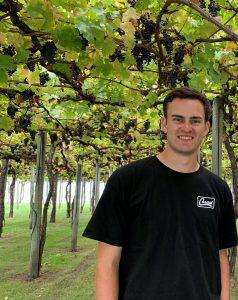 man wearing black shirt standing in a vineyard