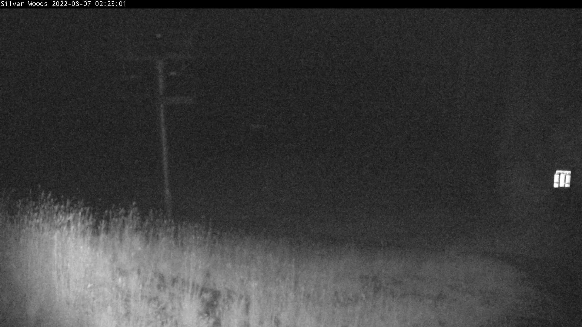 SilverStar Silver Woods Webcam