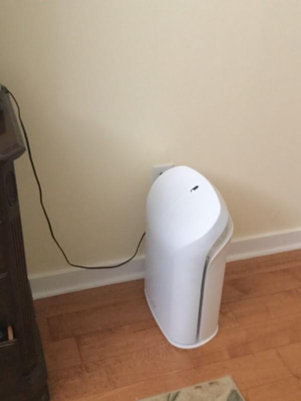 Biogs 2 0 Ultra Quiet Air Purifier Rabbit Air