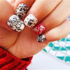 Heather B. verified customer review of Christmas Themed Nail Art Stamping Plates - Occasions Collection, BM-S220: Winter Wonderland
