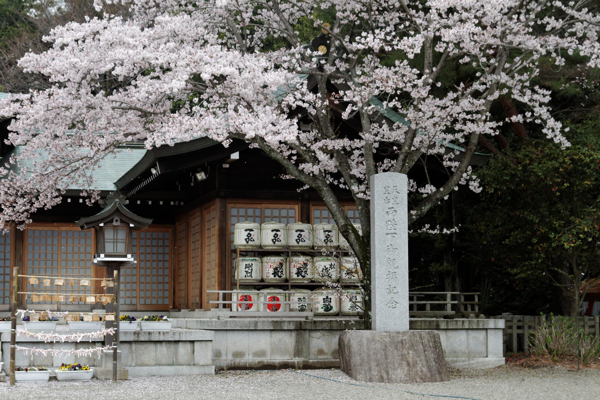 Mito_Shrine