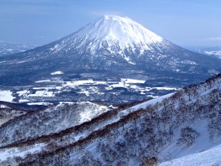 Niseko Snow