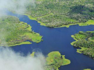 Amazon Brazil