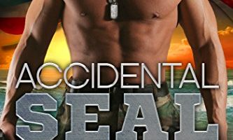 Accidental SEAL (SEAL Brotherhood Series Book 1) by Sharon Hamilton