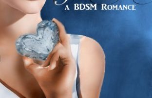 The Frozen Heart (The Aerie Doms Book 2) by Christina Thacher