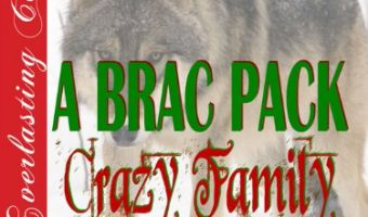 A Brac Pack Crazy Family Christmas [Brac Pack 24] by Lynn Hagen