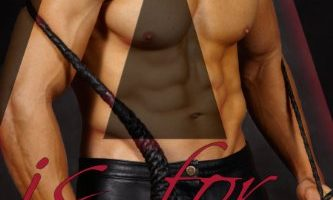 A is for… (BDSM Checklist Book 1) by L Dubois
