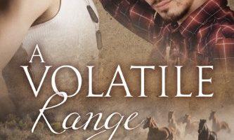 A Volatile Range (Range series Book 6) by Andrew Grey