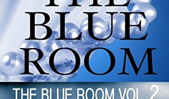The Blue Room Girl Vol. 2: The Blue Room Series by Kailin Gow