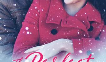 FEATURED BOOK: The Perfect Holiday by Mia Ford