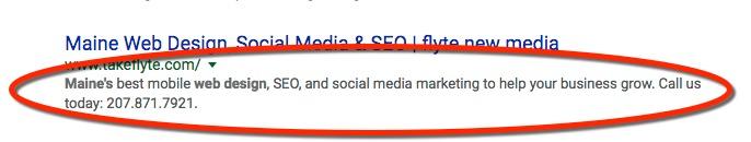 Meta-Descriptions in Search Engine Results