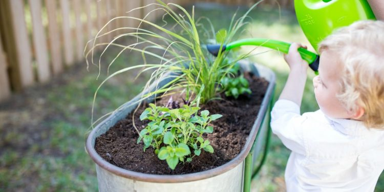 Toddler-Friendly Gardening Tips & Ideas