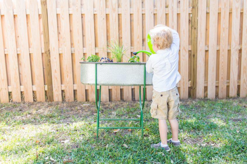Toddler Friendly Gardening 6