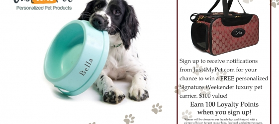 Just4mypet.com Coupons, Promotions, & Discounts