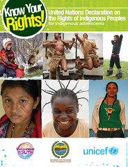 United Nations Declarationon the Rights of Indigenous Peoplesfor indig