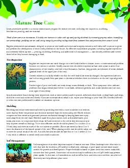 Learn procedures specic to a routine maintenance program for mature t
