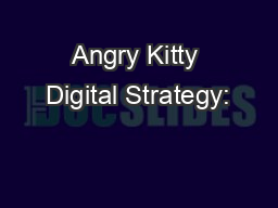Angry Kitty Digital Strategy: