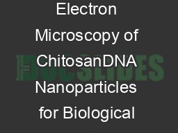 Fluorescence and Scanning Electron Microscopy of ChitosanDNA Nanoparticles for Biological Applications A